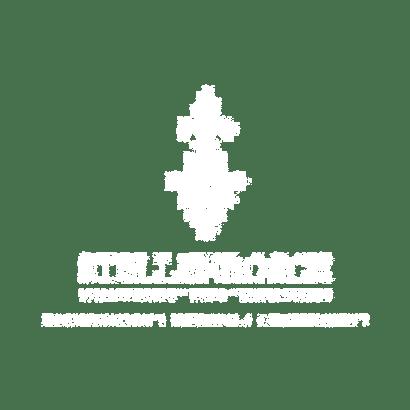 stellenbosch_municipality